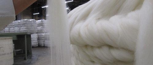 Een streng wol