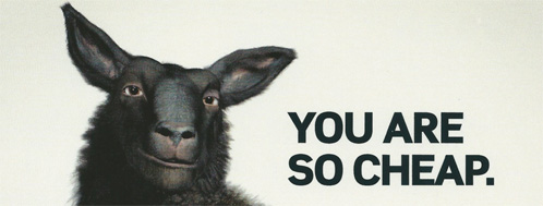 schaap met tekst: You are so cheap