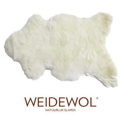 Weidewol lamsvacht wit #2